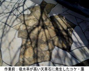 画像1: 石材用洗浄剤 コケスカット 18kg