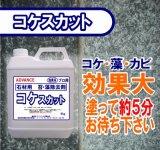 石材用コケ除去剤  コケスカット  4kg